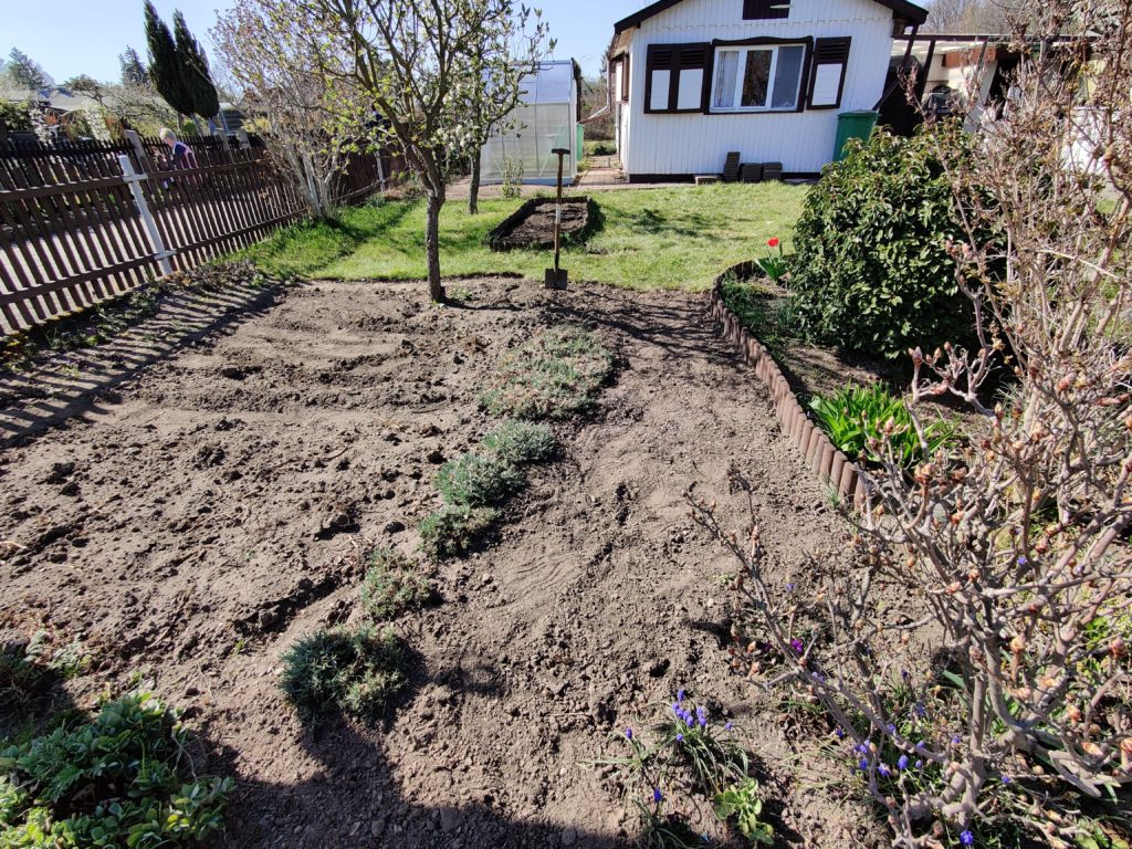 Parzelle 198 – Schaffe schaffe, Häusle baue | Gartentagebuch April 2020 11