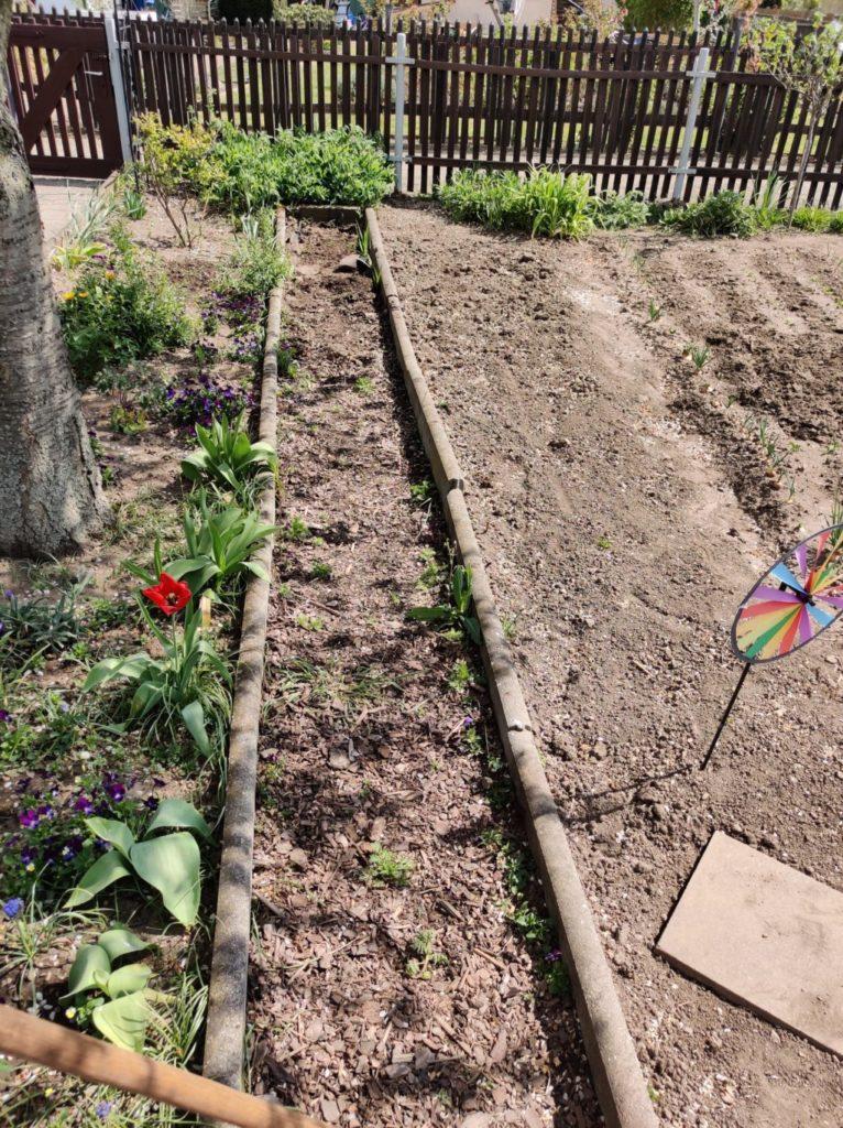 Parzelle 198 – Schaffe schaffe, Häusle baue | Gartentagebuch April 2020 27