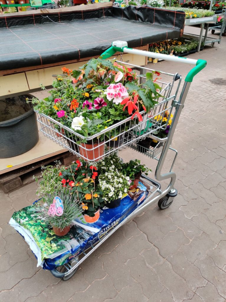 Gartentagebuch Mai 2020 - Gefüllter Einkaufswagen im Gartencenter