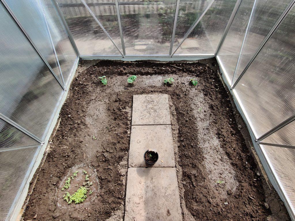 Parzelle 198 – Es kehrt Ruhe ein!   Gartentagebuch Mai 2020 9