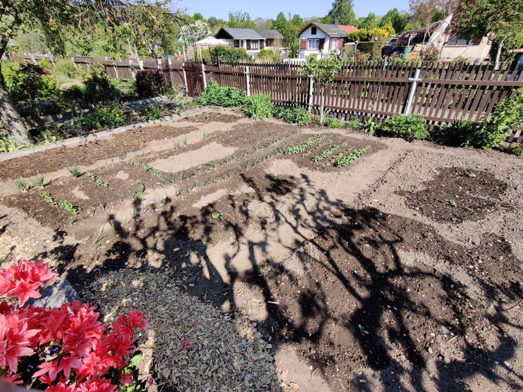 Parzelle 198 – Es kehrt Ruhe ein!   Gartentagebuch Mai 2020 8